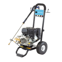2900PSI 6.5HP Portable Gasoline High Pressure Washer for Car Cleaning